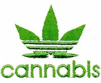 Le New York Times plaide pour la légalisation du cannabis