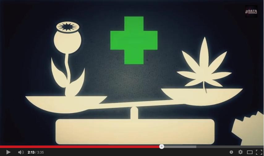 Cannabis : Infographie : la drogue douce dont l'hypocrisie dure